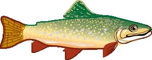 Trout PNG Clip art