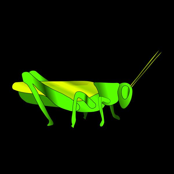 Cartoon Grasshopper PNG Clip art