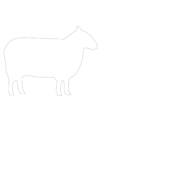 White Sheep  PNG Clip art
