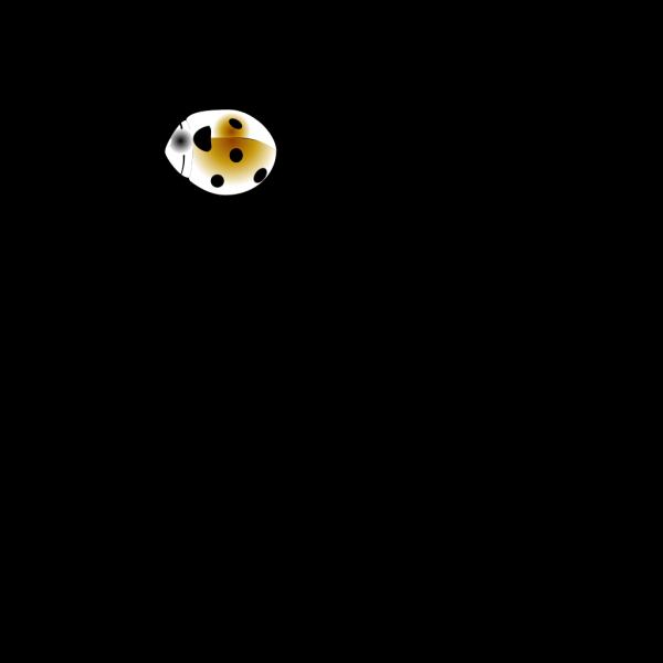Coccinelle PNG Clip art