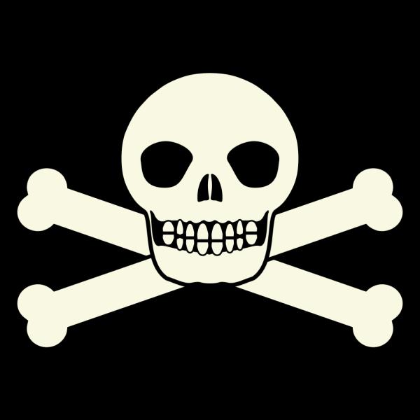 Smiling Skull PNG Clip art