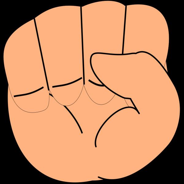 Closed Hand PNG Clip art