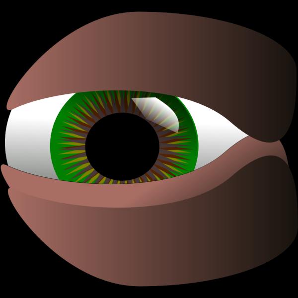 Cartoon Green Eye PNG Clip art