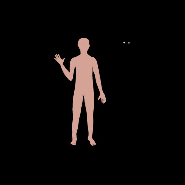 Male Body PNG Clip art