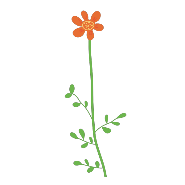 Orange Daisy Flower PNG Clip art