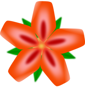 Red Flower Face Up PNG Clip art