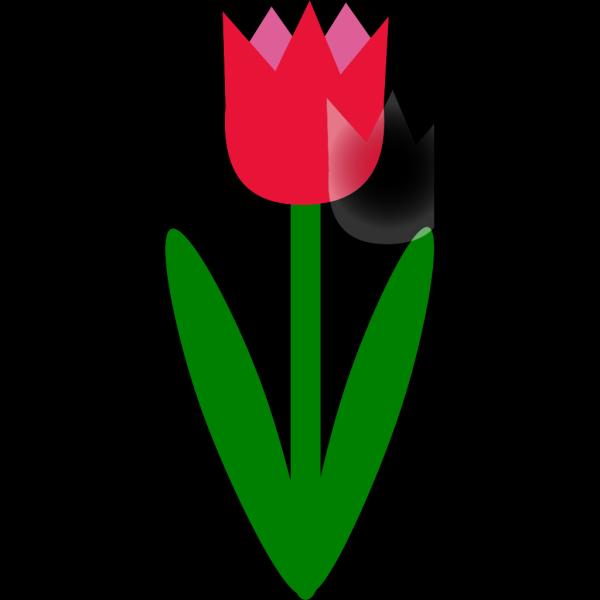 Simple Cartoon Tulip PNG Clip art