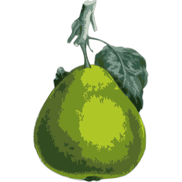 Cartoon Pear Icons PNG Clip art