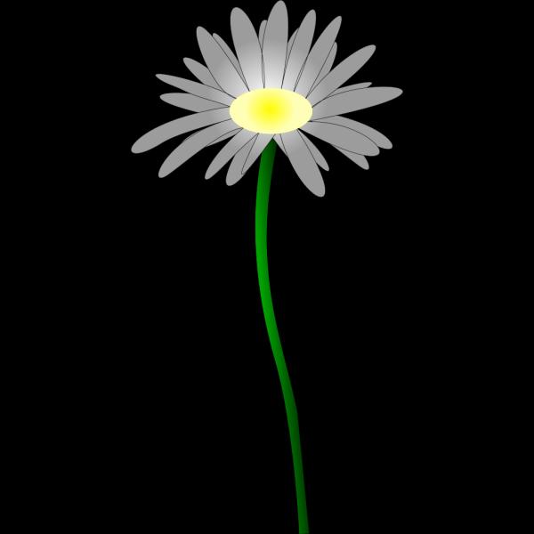 Orange-green Daisy PNG Clip art