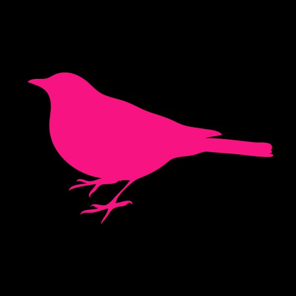Little Fuschia Bird PNG Clip art