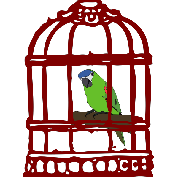 Parrot In A Bird Cage PNG images