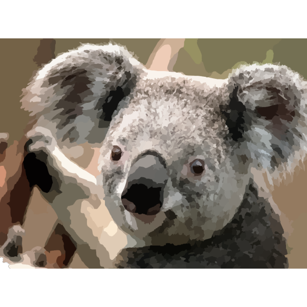 Animals PNG images