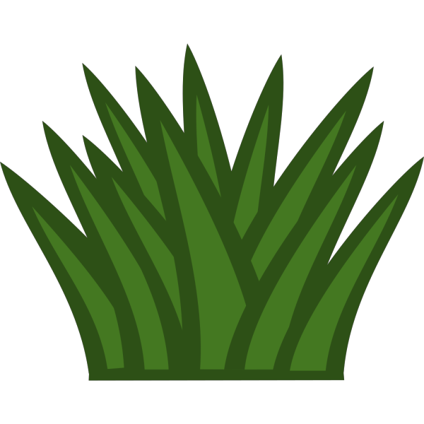 Cactus PNG Clip art