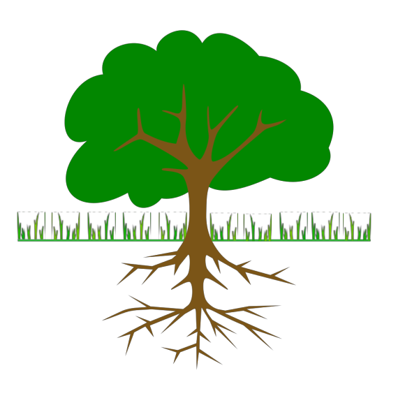Tree Branches And Roots PNG Clip art