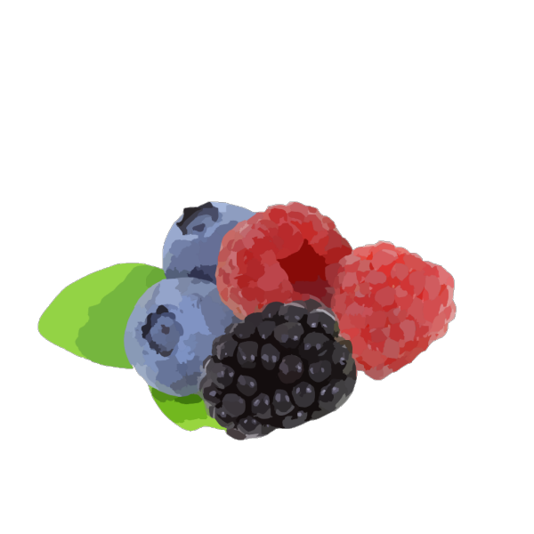 Apple Coloring Fruit PNG Clip art