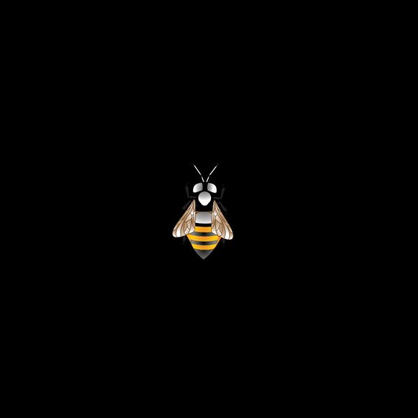 Bee Hd  PNG Clip art