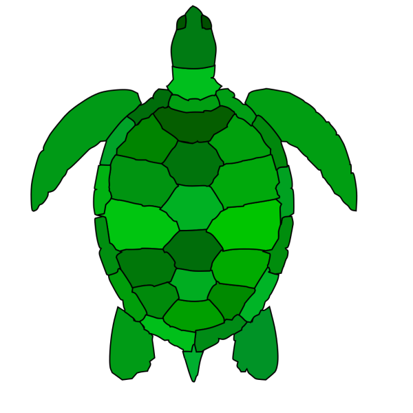 Abstract Turtle PNG Clip art