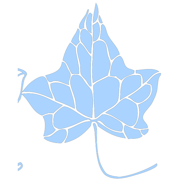 Ivy Leaf PNG Clip art