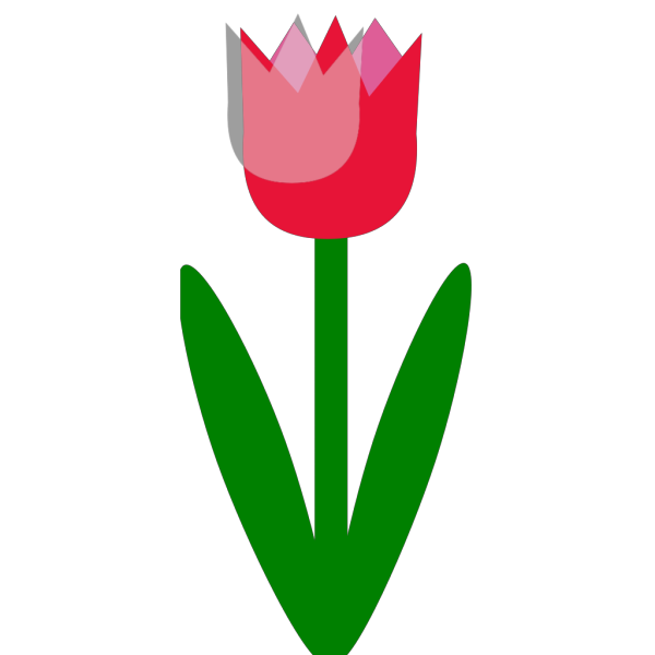 Tulip PNG clipart