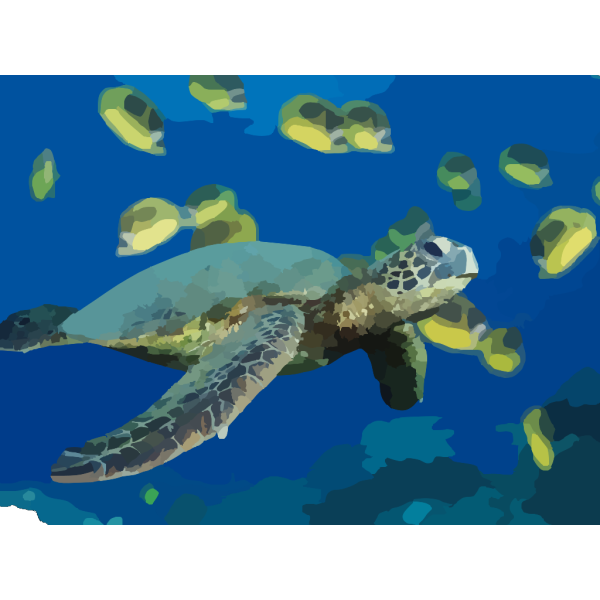 Green Sea Turtle PNG Clip art