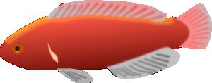 Fish 18 PNG Clip art