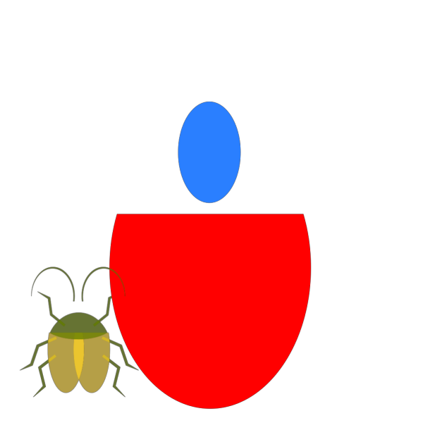 Insect PNG images