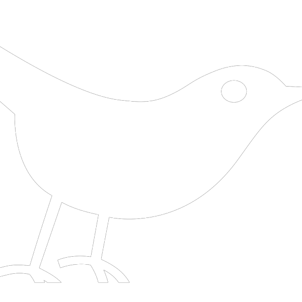 Twitter Bird White PNG icon