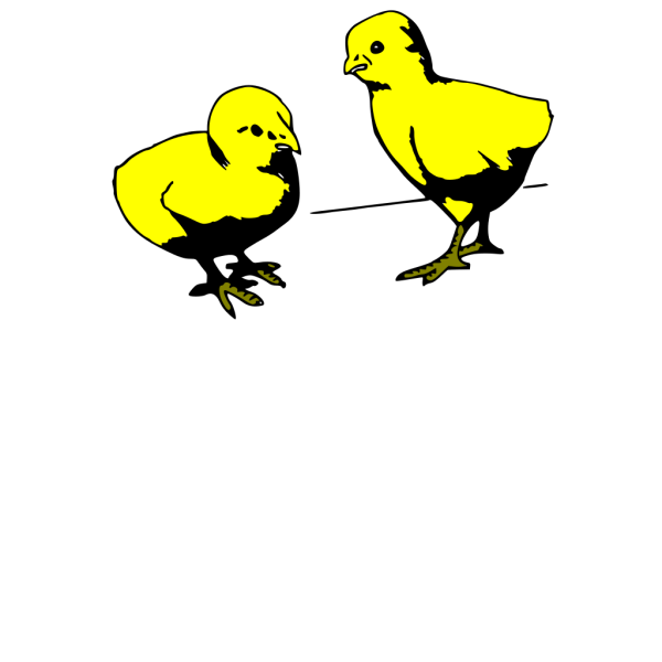 Baby Chicks Colored PNG Clip art