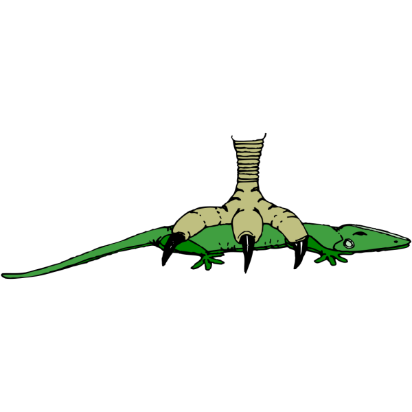 Claw Stepping On Crocodile PNG images