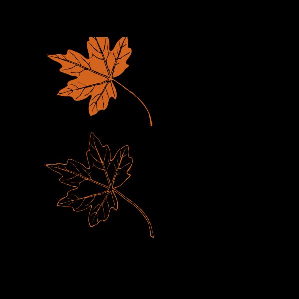 Beech Leaf Outline PNG images