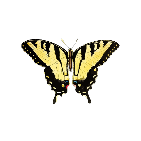 Yellow Butterfly PNG Clip art