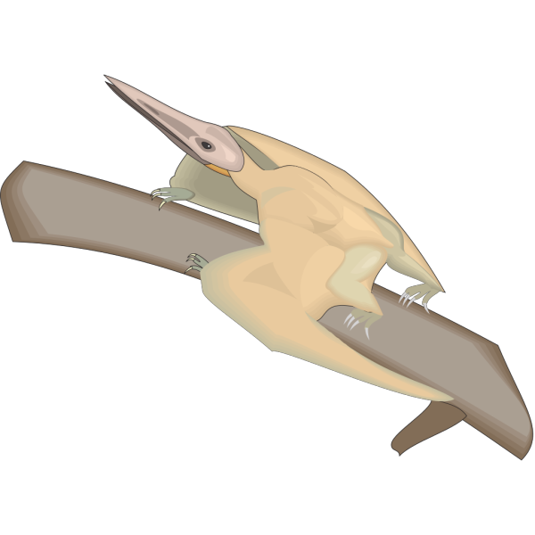 Pterodactylus On A Branch PNG Clip art