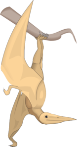 Pterodactylus Hangin From A Branch PNG Clip art