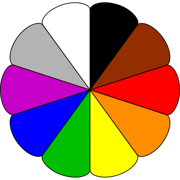 Flower Colors PNG image