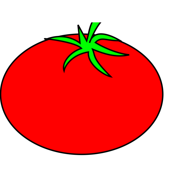 Tomato Plant PNG Clip art