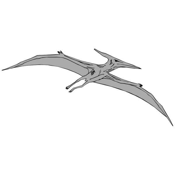 Gray Pterodactyl PNG Clip art