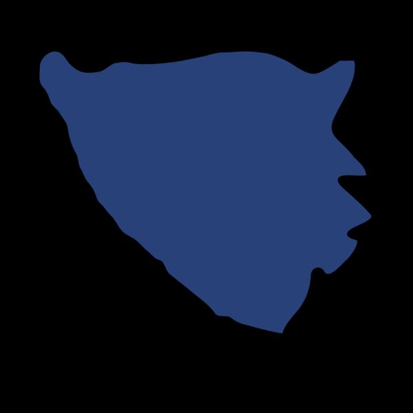 Flag Bih (almir) PNG Clip art