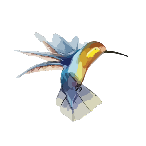 Perched Hummingbird PNG images