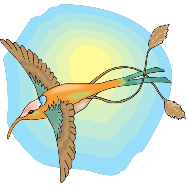 Hummingbird With The Sun PNG images