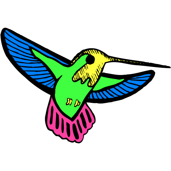 Multicolored Hummingbird PNG images