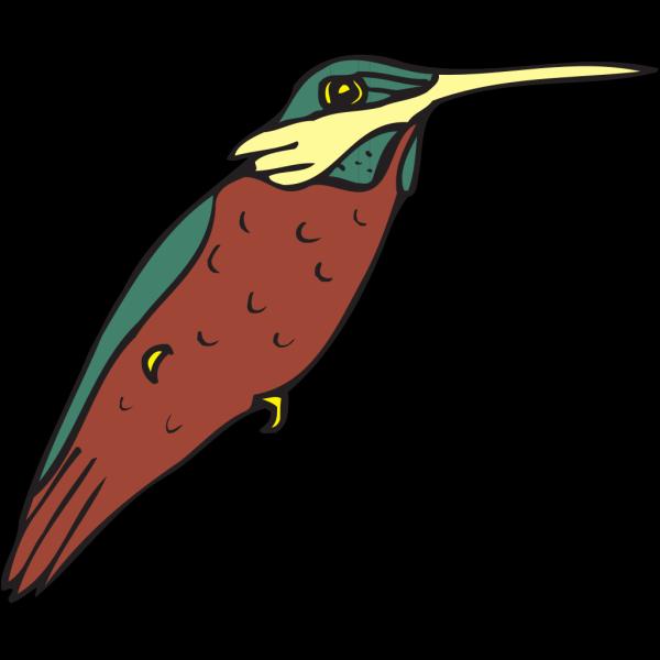 Hummingbird Art PNG Clip art