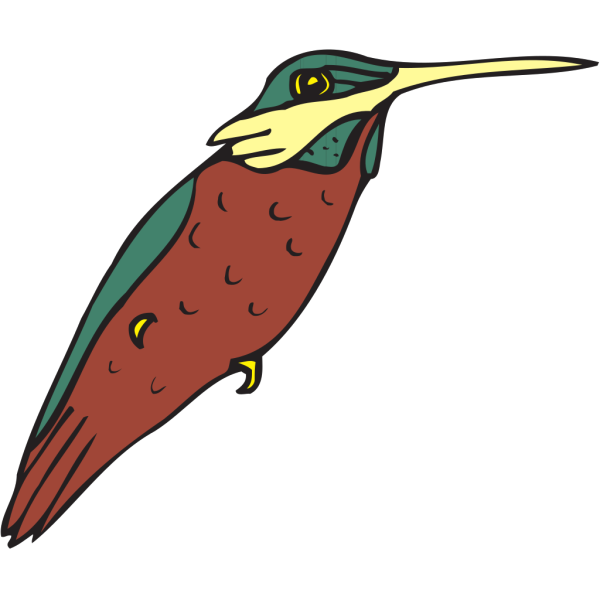 Hummingbird Art PNG images