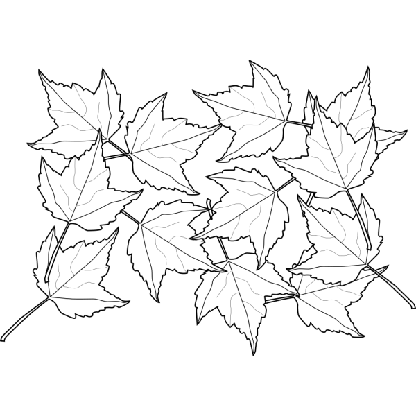 Maple Leaves Shades PNG Clip art