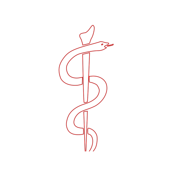 Rod Of Asclepius Outline PNG Clip art