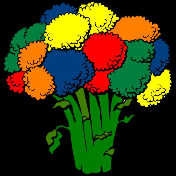Bropcoli Color PNG Clip art