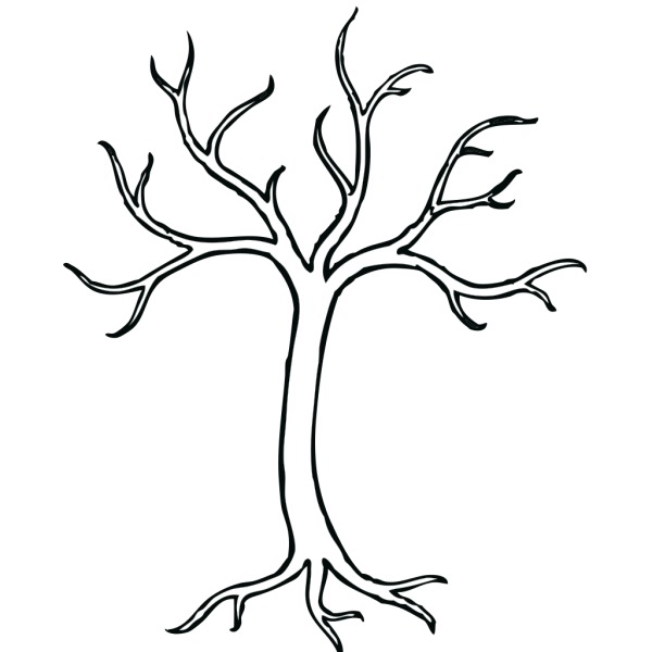 Coloring Bare Tree PNG Clip art