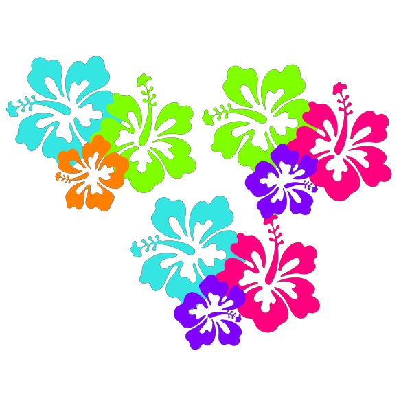 Hibiscus 11 PNG Clip art