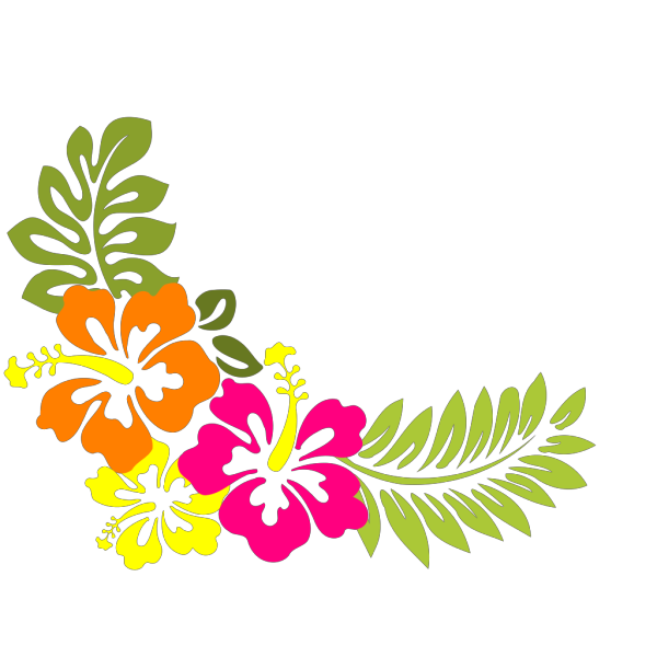 Hibiscus 17 PNG Clip art