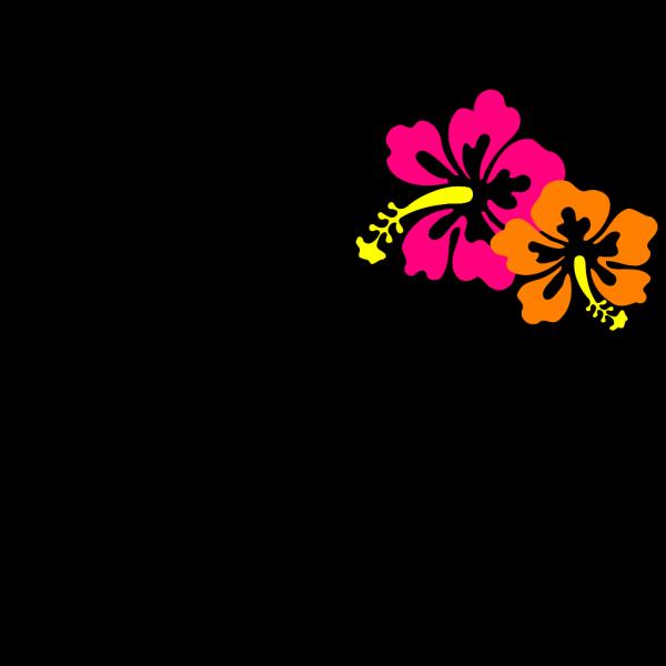 Hibiscus 18 PNG Clip art