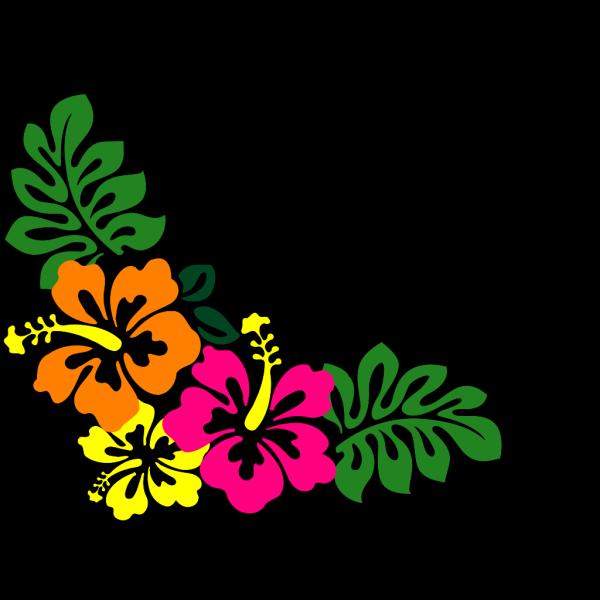 Hibiscus 20 PNG Clip art